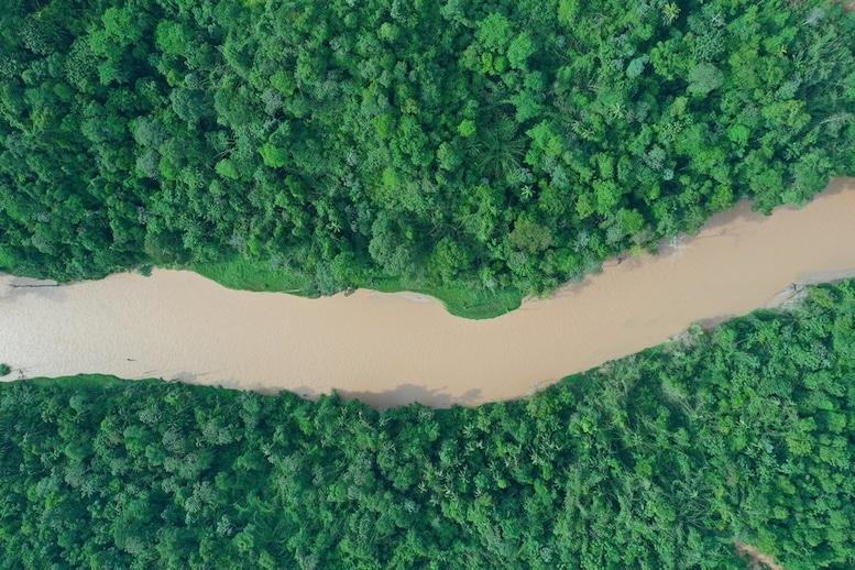 Le Fleuve Amazone   Lithothérapie en Ligne